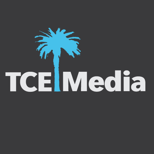 TCE Media Websites SEO PPC Information Technology